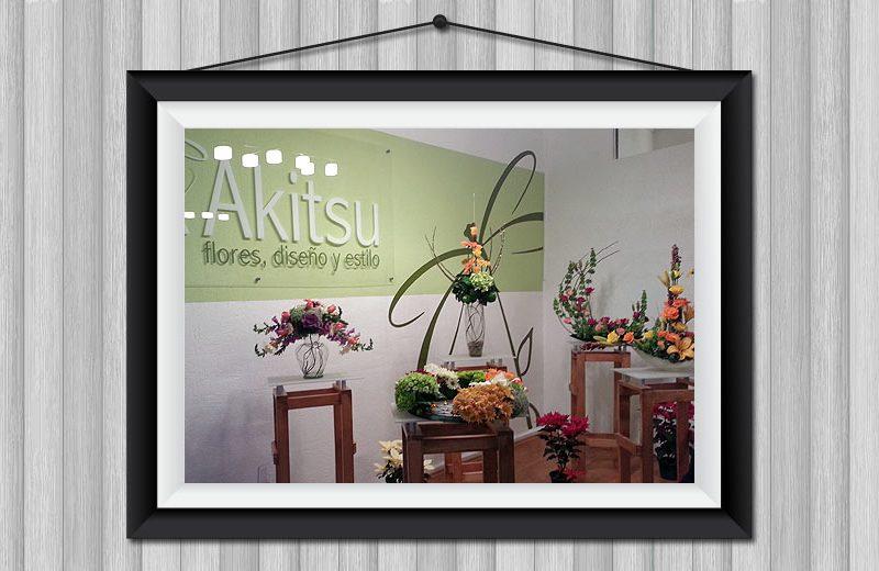 Akitsu - Diseño de Local Comercial - CreadoresWeb.mx