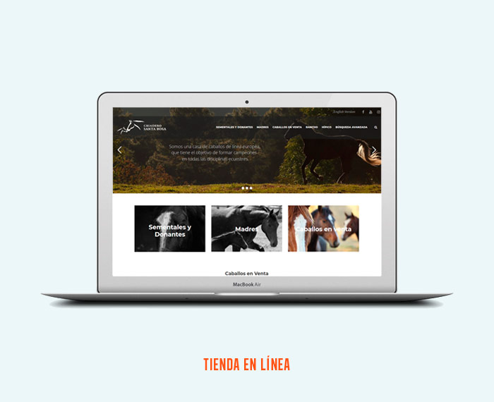 Criadero Santa Rosa - Página Web - CreadoresWeb.mx